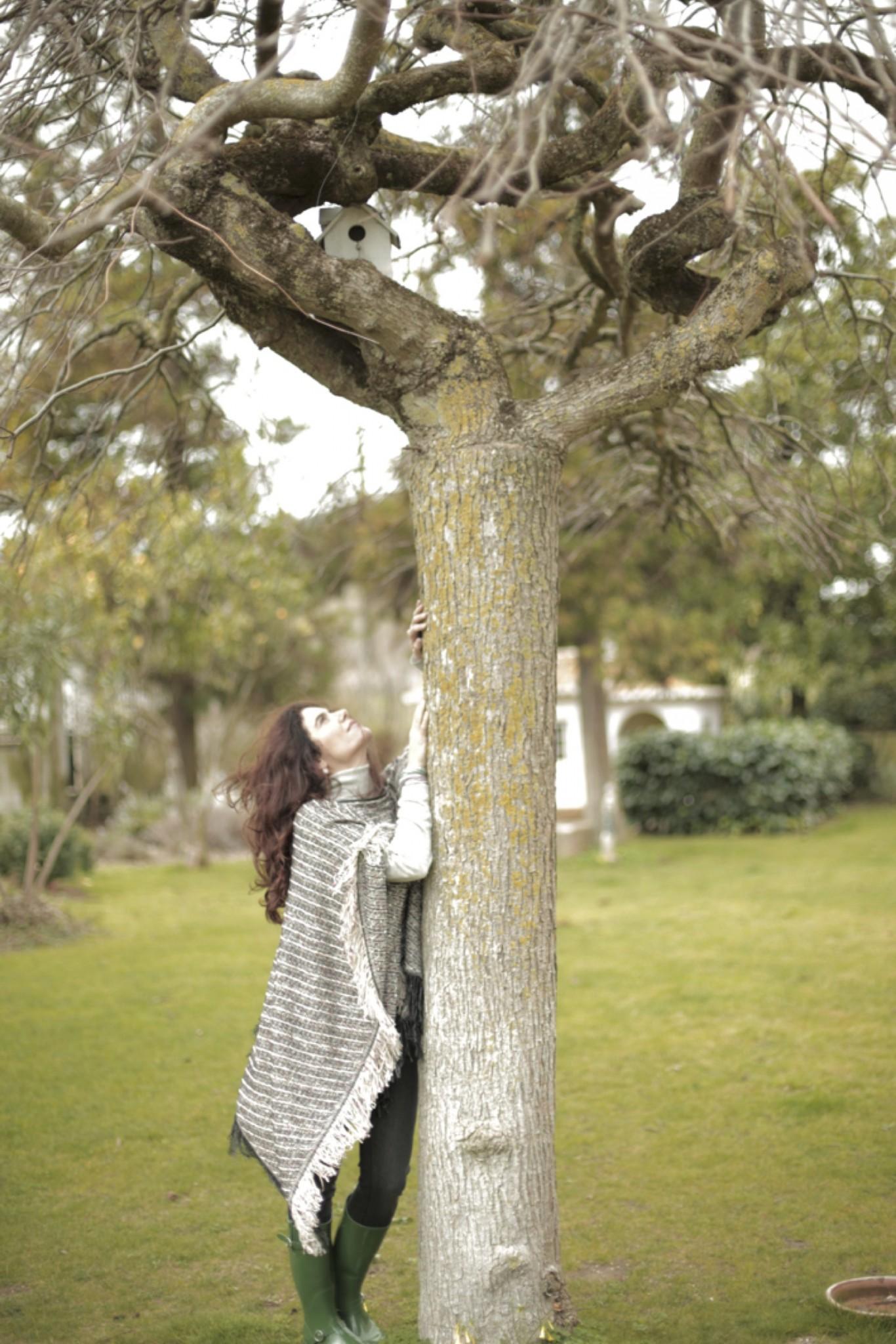 árvore arneiro