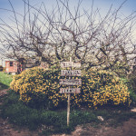 Passatempo da Quinta do Arneiro