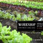 Aprender a fazer a sua horta biológica