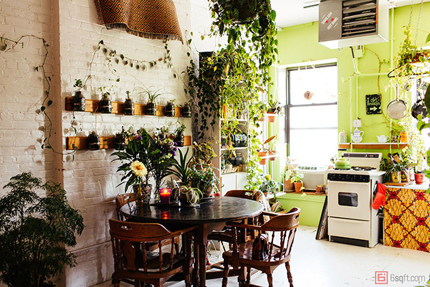 summer-rayne-oakes-plant-filled-apartment-in-williamsburg-brooklyn-kitchen
