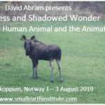 Workshop com David Abram