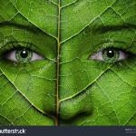#faceforgreen para festivais mais verdes