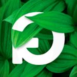 Greenfest este ano tem nova cara