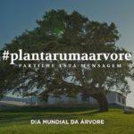 Plantar uma Àrvore