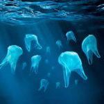 Sem plástico #  International Plastic Bag-Free Day