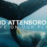 "David Attenborough ""A life on Our Planet"""